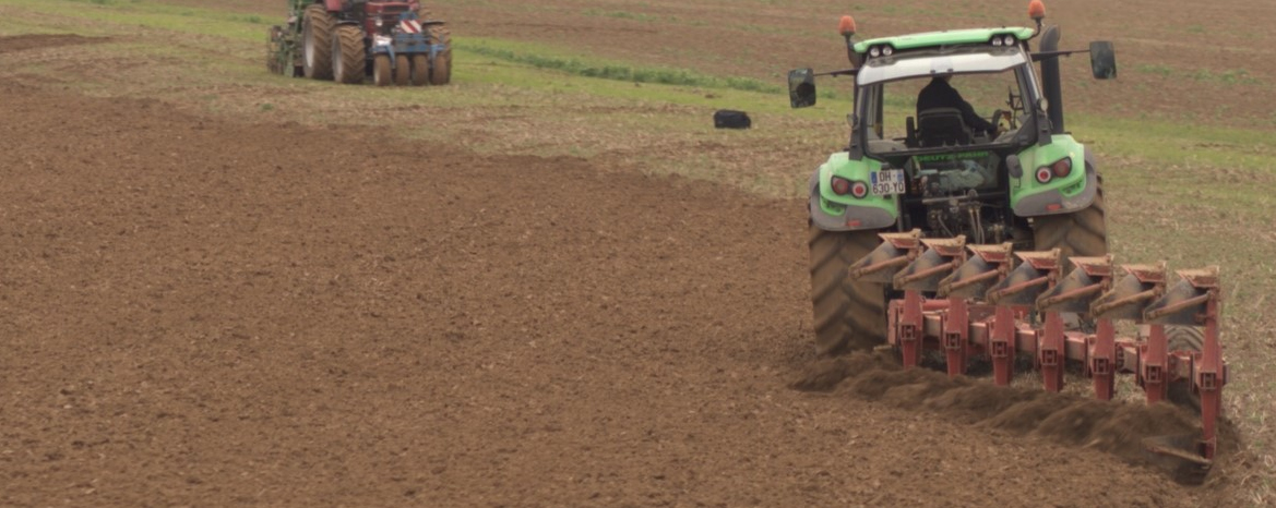 Labour dans les champs.jpg